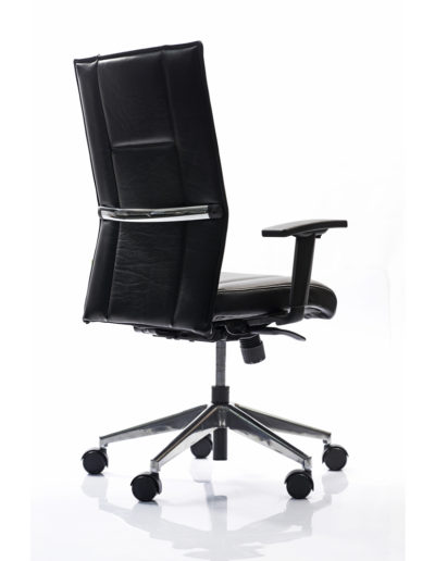 Ice-II-Executive-Height-Adjustable-Arm-Side-Back