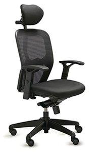 Activ Black with Headrest